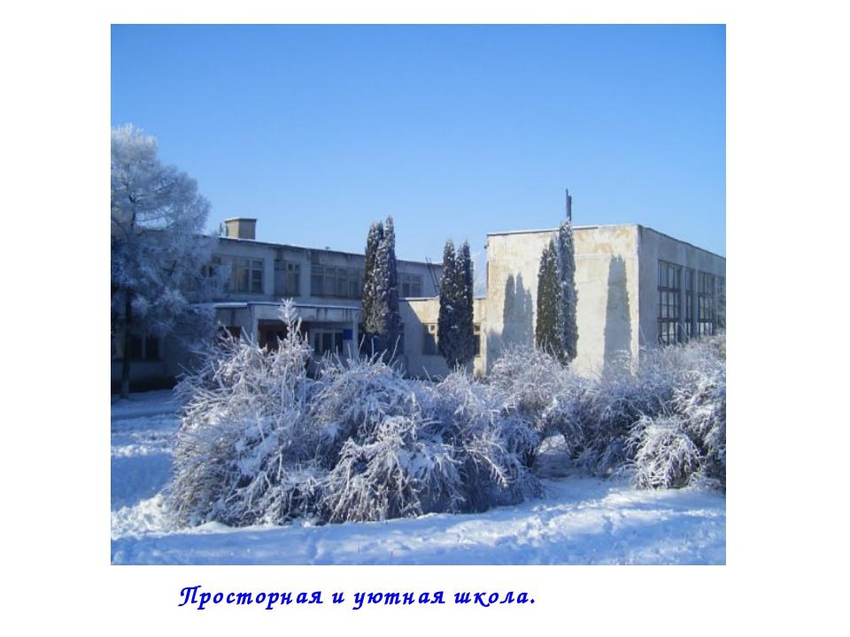 Просторная и уютная школа.