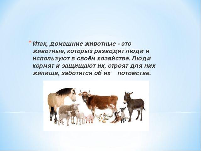 Итак, домашние животные - это животные, которых разводят люди и используют в...