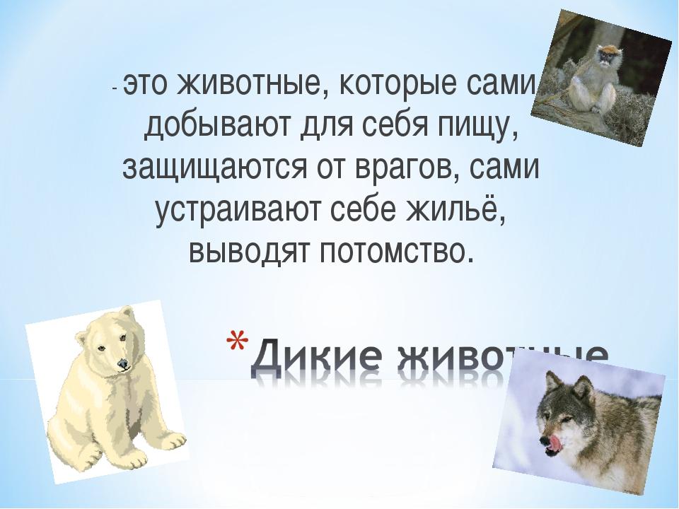 - это животные, которые сами добывают для себя пищу, защищаются от врагов, са...