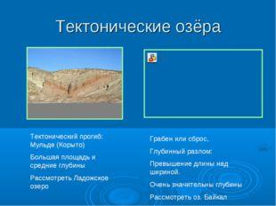 Тектонические озёра Тектонический прогиб: Мульде (Корыто) Большая площадь и с