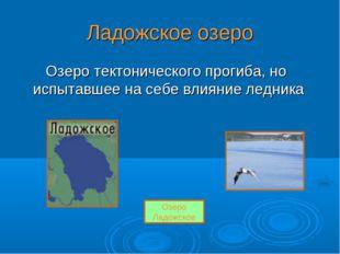 Ладожское озеро Озеро тектонического прогиба, но испытавшее на себе влияние л