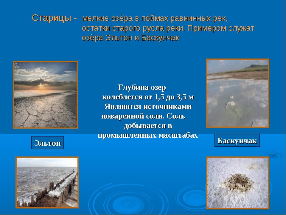 Старицы - мелкие озёра в поймах равнинных рек, остатки старого русла реки. Пр...