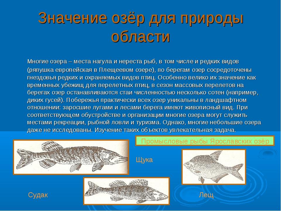 Значение озёр для природы области Многие озера – места нагула и нереста рыб,...