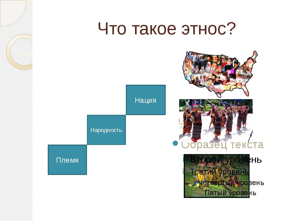 Что такое этнос? Племя Народность Нация