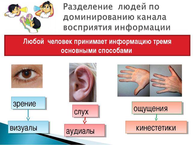 Любой человек принимает информацию тремя основными способами зрение слух ощущ...