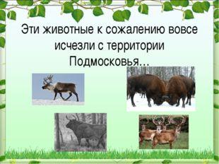 Эти животные к сожалению вовсе исчезли с территории Подмосковья…
