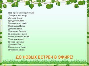 Над программой работали: Гладун Александра Логинов Иван Груздкова Елена Машин