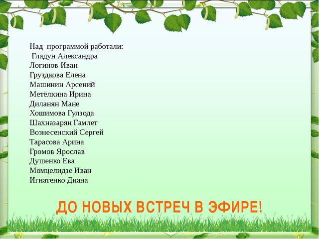 Над программой работали: Гладун Александра Логинов Иван Груздкова Елена Машин...