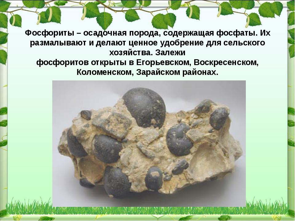 Фосфориты – осадочная порода, содержащая фосфаты. Их размалывают и делают це...