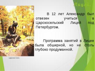 Лицей. В 12 лет Александр был отвезен учиться в Царскосельский Лицей под Пете