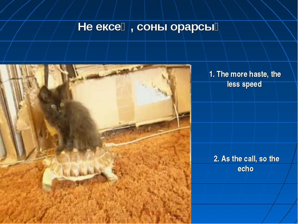 Не ексең, соны орарсың 1. The more haste, the less speed 2. As the call, so t...