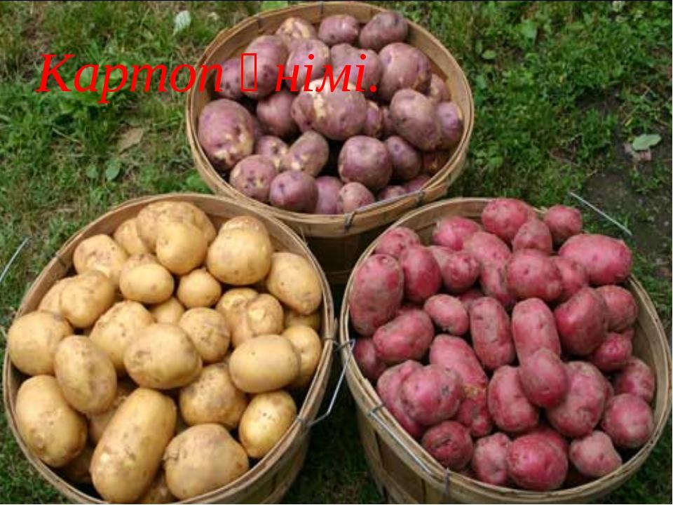 Картоп өнімі.