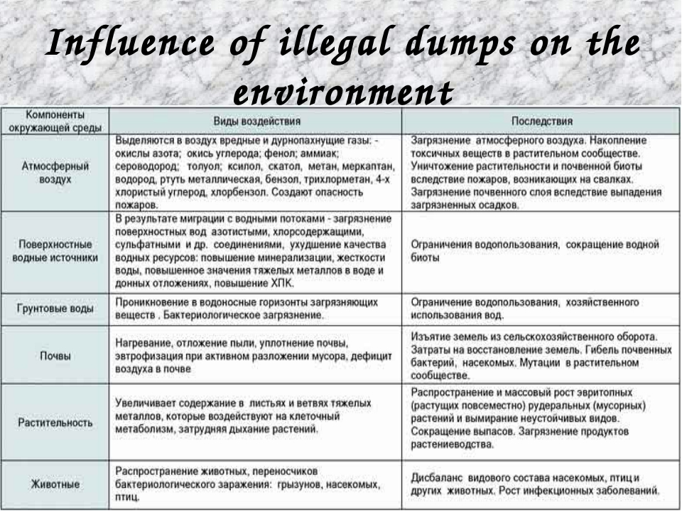 Influence of illegal dumps on the environment .