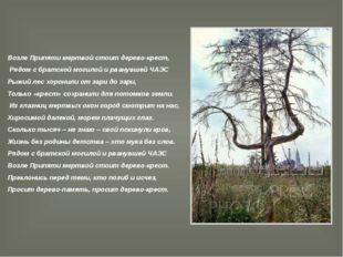Возле Припяти мертвой стоит дерево-крест, Рядом с братской могилой и рванувше