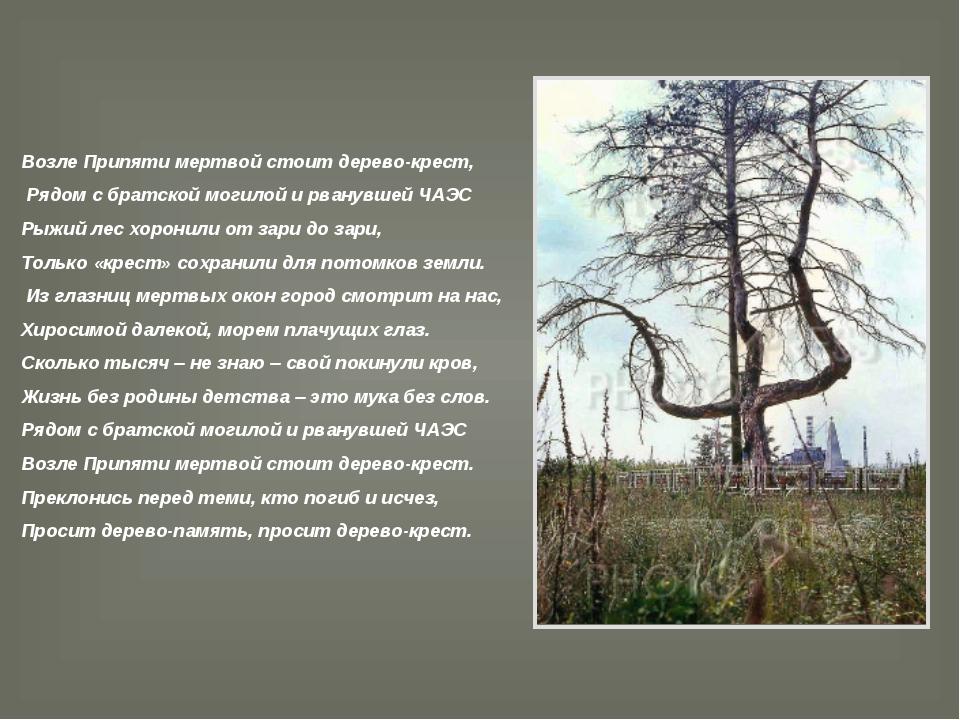 Возле Припяти мертвой стоит дерево-крест, Рядом с братской могилой и рванувше...
