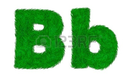 http://us.123rf.com/450wm/plearn/plearn1205/plearn120500007/13524293-b-b-green-grass-letter-isolated-on-white-background.jpg