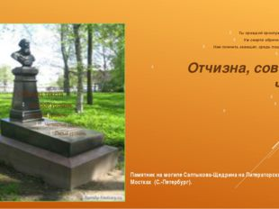 Памятник на могиле Салтыкова-Щедрина на Литераторских Мостках (C.-Петербург)