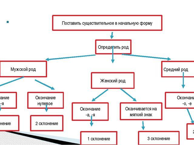 Поставить существительное в начальную форму Определить род Мужской род Женск...