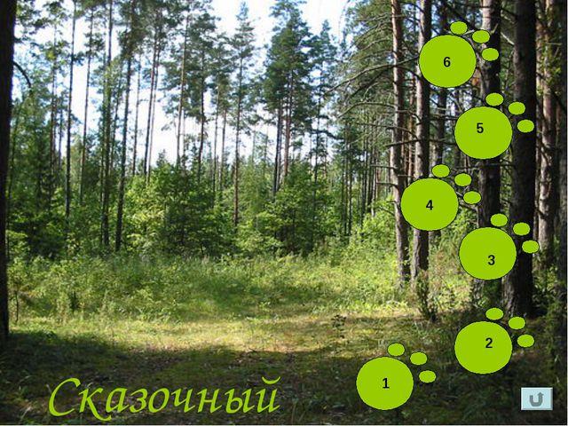 Сказочный лес 1 2 3 5