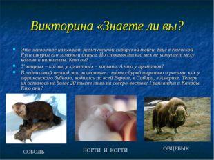 Викторина «Знаете ли вы? Это животное называют жемчужиной сибирской тайги. Ещ