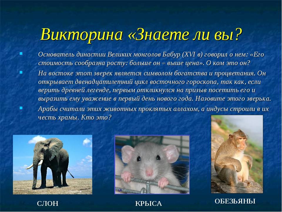 Викторина «Знаете ли вы? Основатель династии Великих монголов Бабур (XVI в) г...