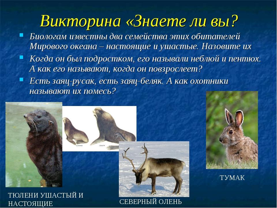 Викторина «Знаете ли вы? Биологам известны два семейства этих обитателей Миро...