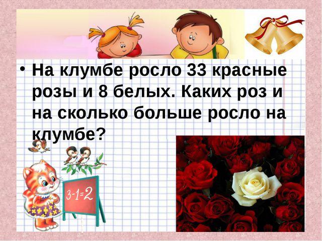 На клумбе росло 33 красные розы и 8 белых. Каких роз и на сколько больше рос...