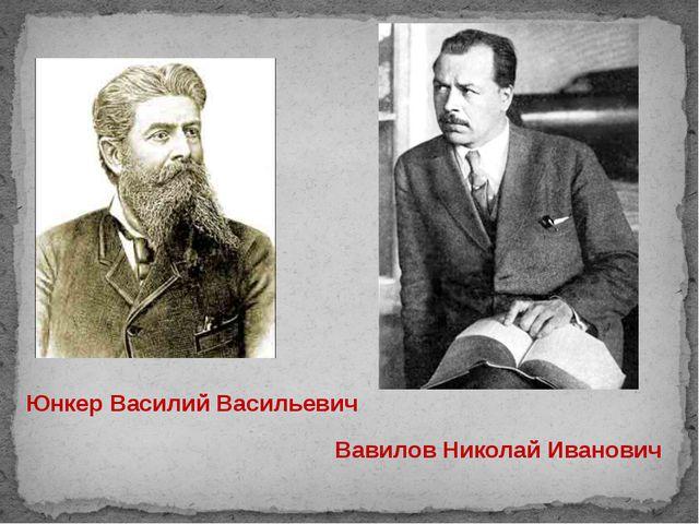 Юнкер Василий Васильевич Вавилов Николай Иванович