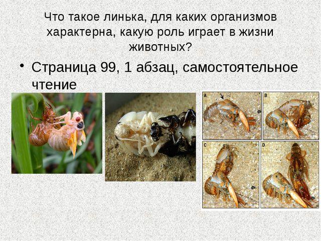 Что такое линька, для каких организмов характерна, какую роль играет в жизни...
