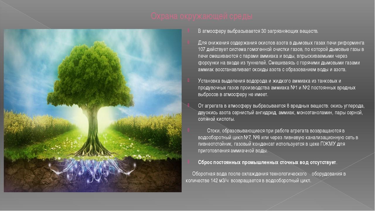 Охрана окружающей среды В атмосферу выбрасывается 30 загрязняющих веществ. Д...