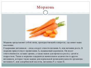 Морковь Морковь представляет собой овощ, произрастающий в широтах, где живет