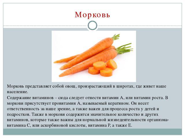 Морковь Морковь представляет собой овощ, произрастающий в широтах, где живет...