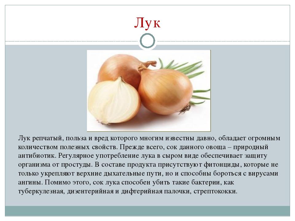 Самые популярные вкусные грузинские блюда  рецепты