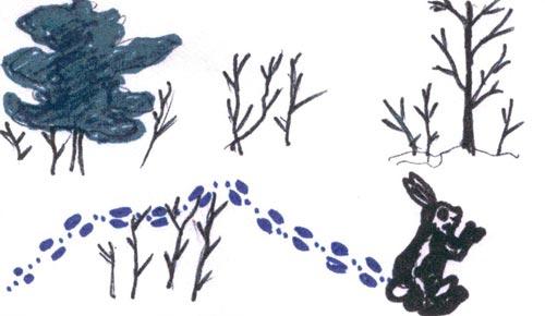 Рисунок 5