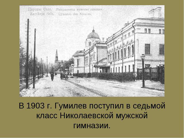 В 1903 г. Гумилев поступил в седьмой класс Hиколаевской мужской гимназии.