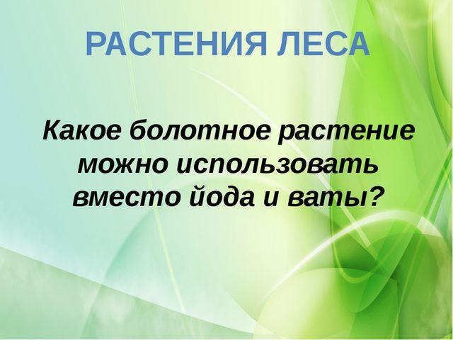 РАСТЕНИЯ ЛЕСА Какое болотное растение можно использовать вместо йода и ваты?