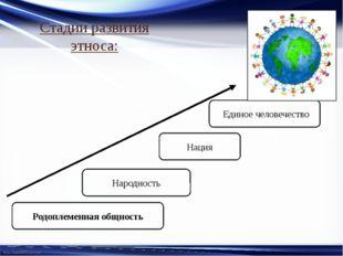 Стадии развития этноса: Родоплеменная общность Народность Нация Единое челове