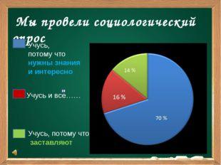 Мы провели социологический опрос Учусь, потому что нужны знания и интересно