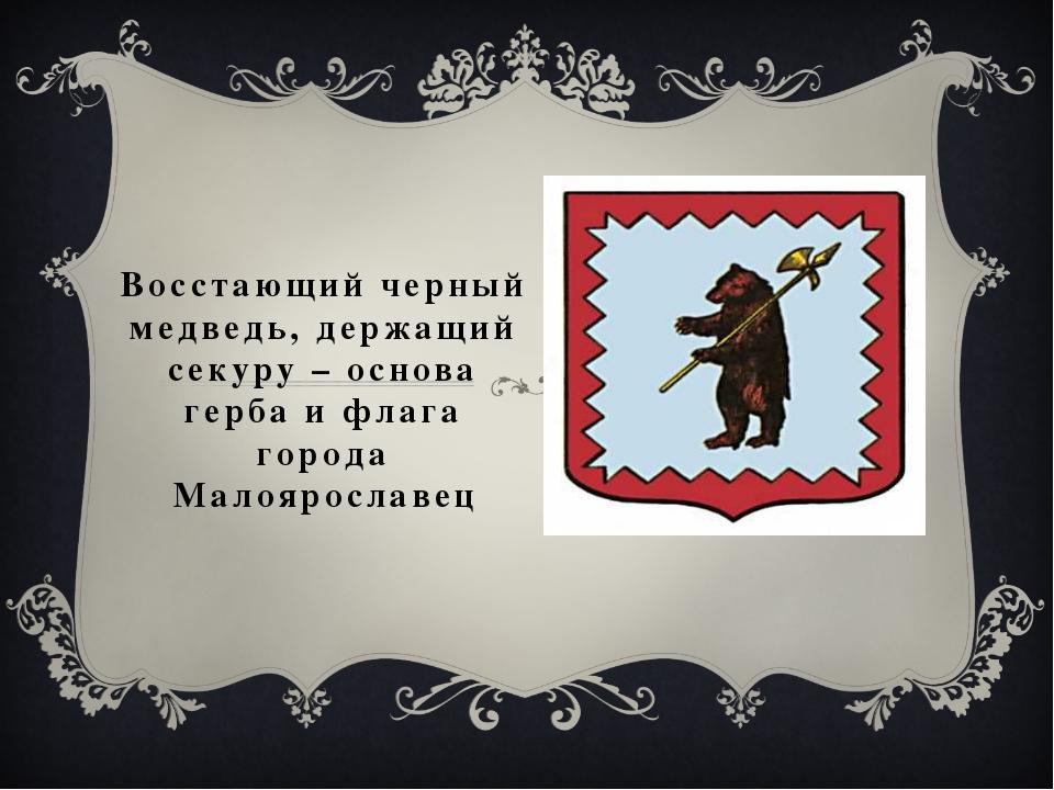 Восстающий черный медведь, держащий секуру – основа герба и флага города Мало...