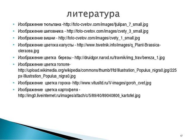 Изображение тюльпана -http://foto-cvetov.com/images/tjulipan_7_small.jpg Изоб...