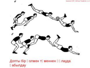 Допты бір қолмен төменнен құлауда қабылдау Шымкент ИПК Сейтжан Темірғали 11 топ