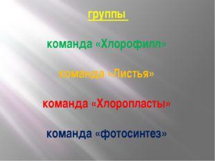 группы команда «Хлорофилл» команда «Листья» команда «Хлоропласты» команда «ф