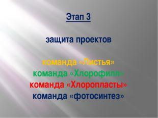 Этап 3 защита проектов команда «Листья» команда «Хлорофилл» команда «Хлоропла