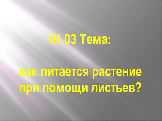 01.03 Тема: как питается растение при помощи листьев?