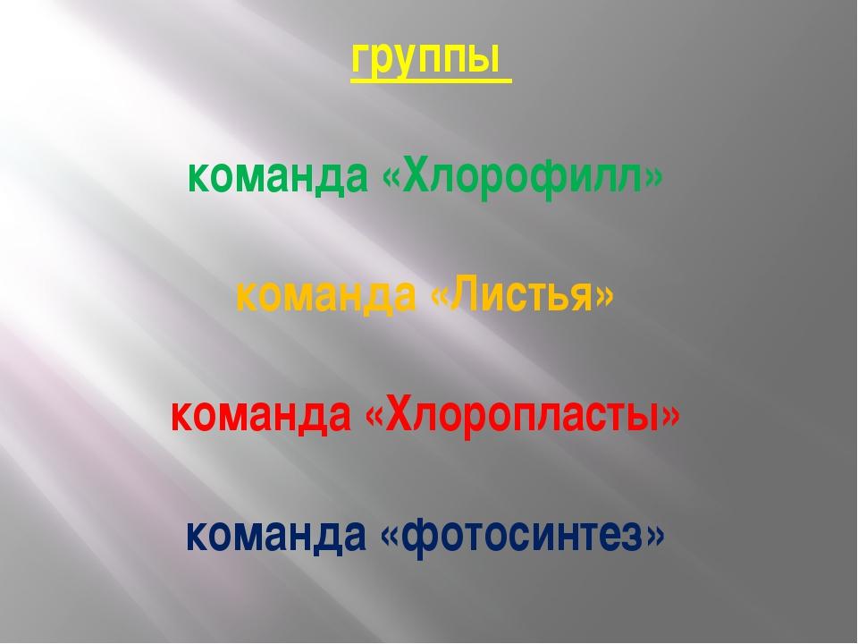 группы команда «Хлорофилл» команда «Листья» команда «Хлоропласты» команда «ф...