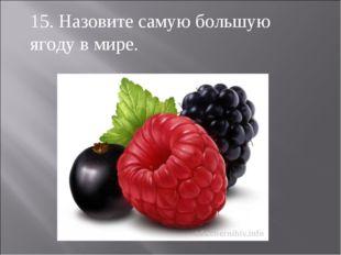 15. Назовите самую большую ягоду в мире.
