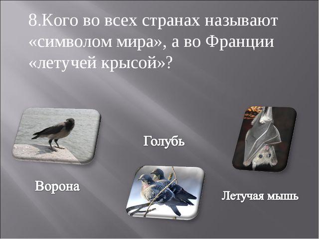 8.Кого во всех странах называют «символом мира», а во Франции «летучей крысой»?