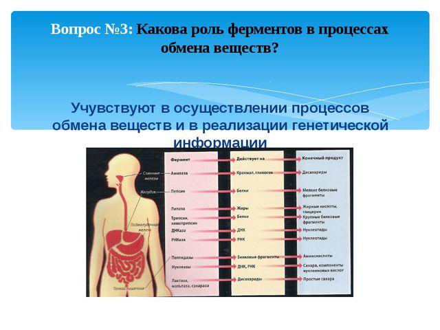 Питание пищеварение и биологии гдз тест
