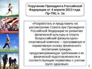 «Разработать и представить на рассмотрение Совета при Президенте Российской Ф