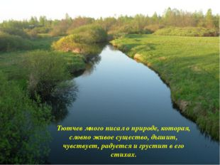 Тютчев много писал о природе, которая, словно живое существо, дышит, чувству